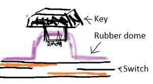 Rubber Dome