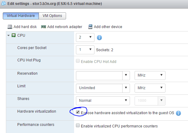 Enabled Nested Virtualization