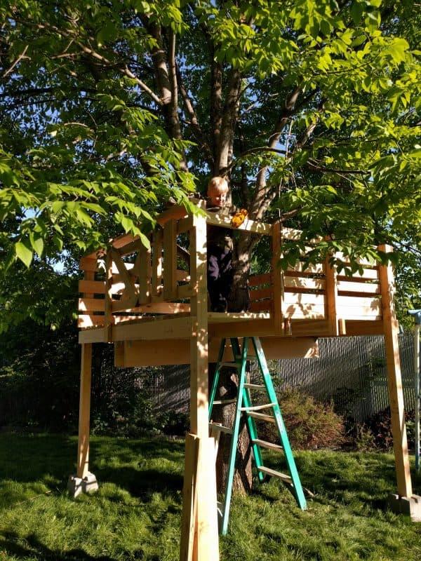 Eli in tree house