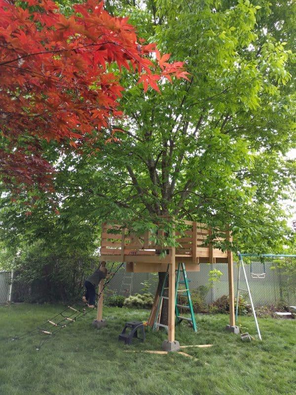 Eli climbing cargo net up to treehouse