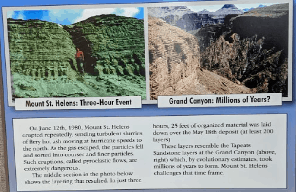 Graphic showing Mount St. Helens rock layers compared to Grand Canyon