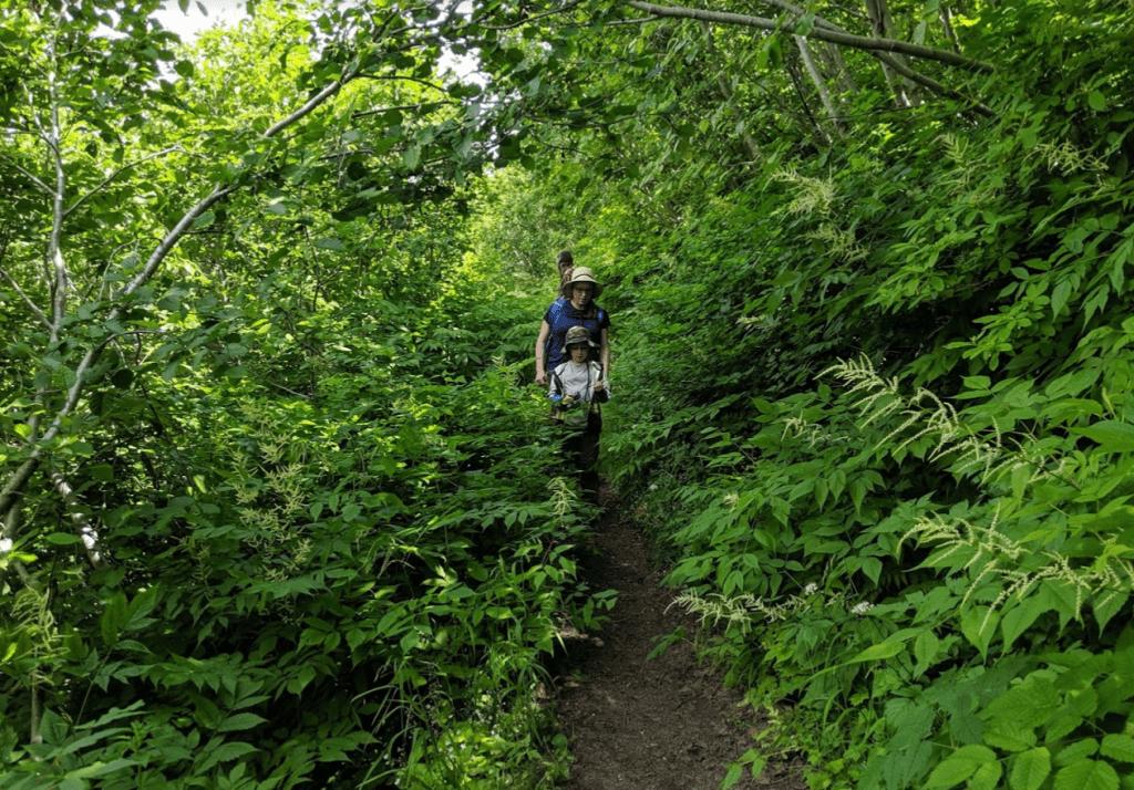 Hike to Spirit Lake